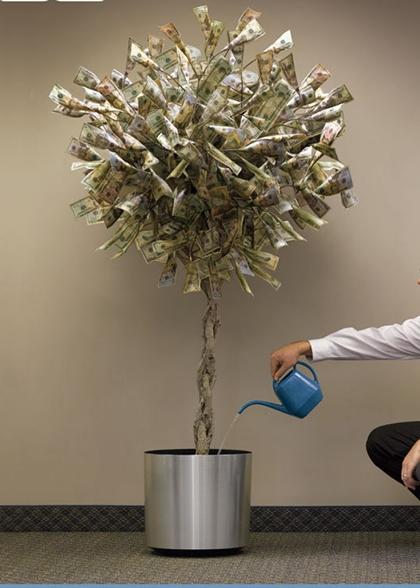 pohon uang